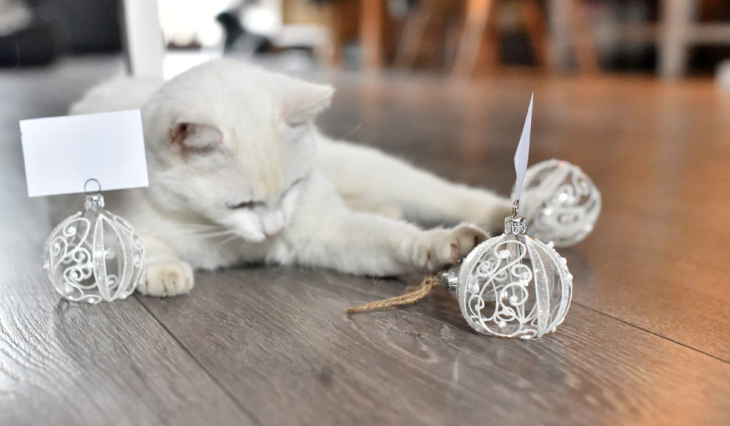 Bílá kočka se svatebními jmenovkami. Skleněné, ručně malované s dekorem kvítků.